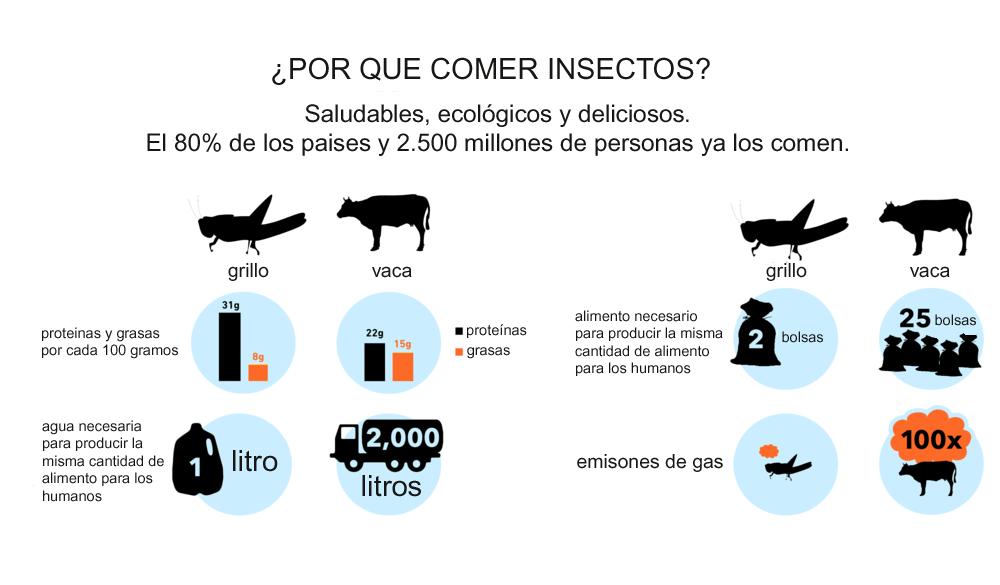ventajas del consumo de insectos
